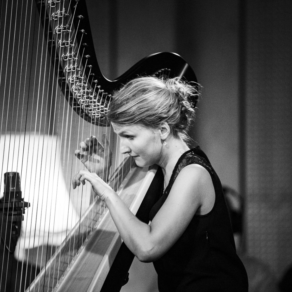 Stephanie Beck Harp