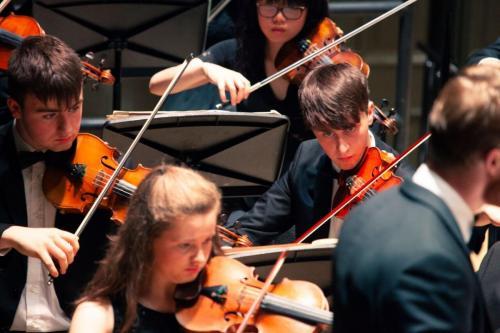 Violins 3